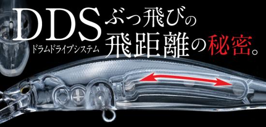 ss_dis02__03_03