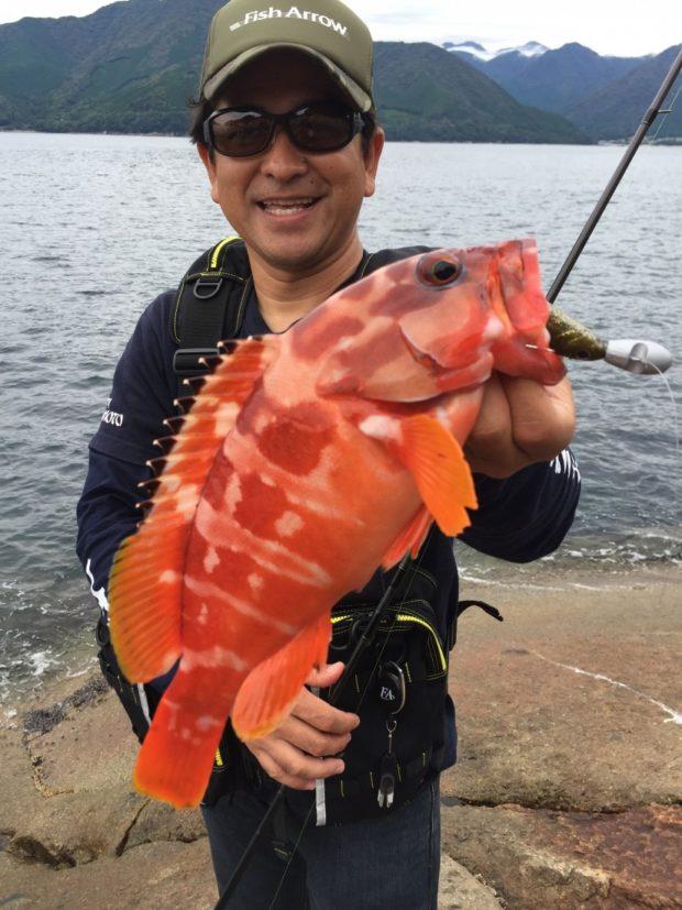 三重尾鷲の磯で簡単根魚フィッシング!松本猛司