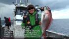 ザ ストロング パワーベイト Vol.129「冬の日本海でディープ鯛ラバ」