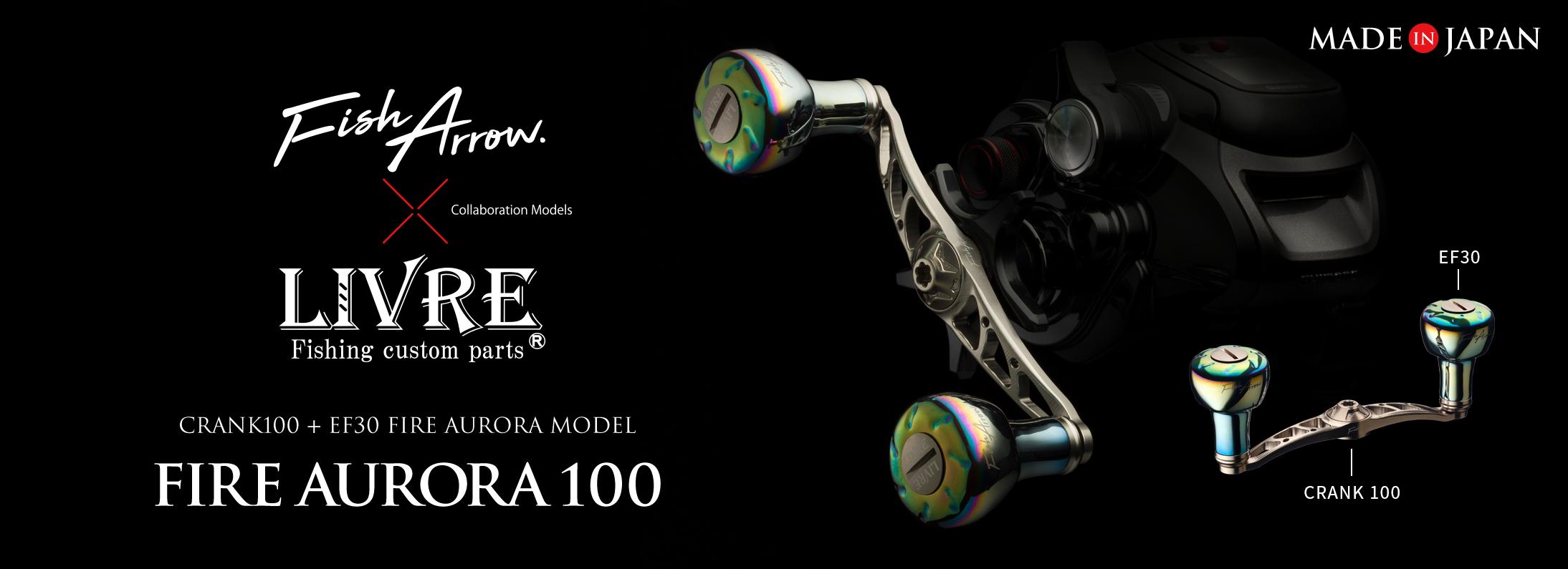 fireaurora100